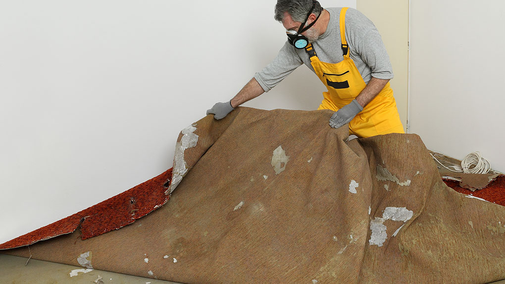 Post-remodel cleaning with a face mask and tarp for protection